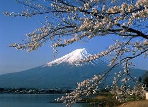 Cơ hội cho đồ gỗ, mỹ nghệ vào Nhật bản